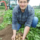 Home grown Lady Christl new potatoes now available