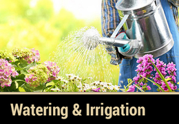 Garden Care Watering & Irrigation