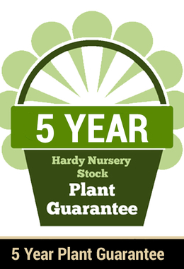 5 Year Guarantee on Hardy Plants